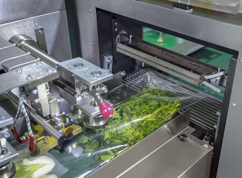 lettuce packaging machine