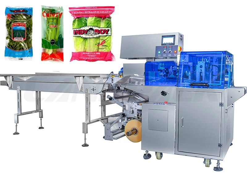 Automatic Fruit/ Vegetable Reciprocating Flow Pack Machine (HFFS) With Three Servo